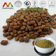 ISO&Kosher 20%~50% Fenusides(Saponin) Trigonella Foenum-graecum Extract