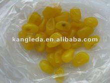 New Crop Dried Golden Orange