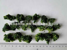 Dehydrated Broccoli florets
