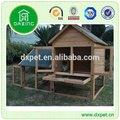 de madeira da gaiola do papagaio dxr027