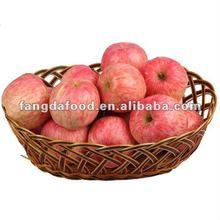 Chinese Red Yantai Fuji Apple