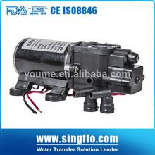 Singflo 12V/24V small pump high pressure