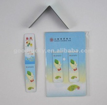 2012 Promotion gift magnetic bookmark/magnetic clip