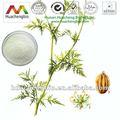 Iso& casher. cnidium monnieri extrait 20% ~90% osthole