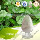 Centella Asiatica extract Gotu kola extract Asiaticoside