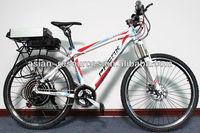 Wholesale 2013 Newest Off Road Electric Bike 48V 1000W Frame Ebike + 48V 20Ah Lithium Battery in Flat Aluminium Case locked