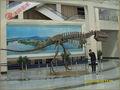 artificial fósseis de dinossauros para venda