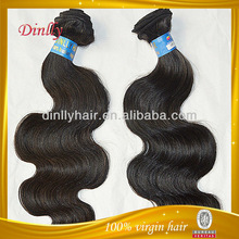 Gorgeous aaaa virgen brizilian del pelo de la onda ervamatin