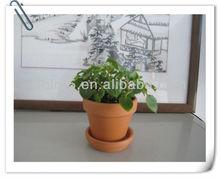Ceramic bonsai pots terracotta potteries of garden ceramica vase with flower seed