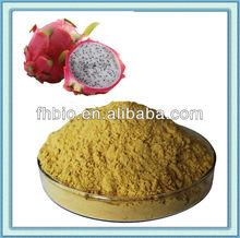 100% Natural Dragon Fruit Powder for Drinks