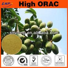 Antioxidant Olive Leaf Extract Powder