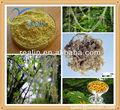 100% natural usnea extrato de sódio e ácido úsnico a preço de fábrica