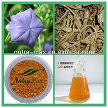 Halal & Kosher Cert - Radix Platycodi Extract Powder 4:1 5:1 10:1