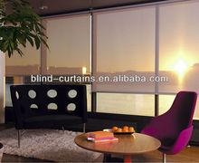 2014 nice type spring roller window blind /curtain
