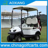 2013 New Model,2 seater mini electric golf cart,with 2 golf bag racks,36V Motor,2000x860x1710mm,CE and 1 year warranty