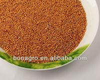 yellow millet cheap price & free sample