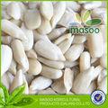 2013 nova colheita de cevada grãosdegirassol, sementes de girassol e amêndoas de sementes de girassol preto quente para a venda