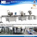 Primavera/alcalina águamineral linha de produção( projecto chave na mão)