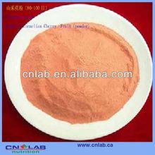 GMP factory Raspberry juice powder