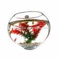 Soufflé à la main bol de poisson verre demi - sphère forme bol de poisson