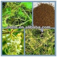 cuscuta seed extract