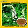 GMP Certified Manufacturer Supply Natural Cimicifuga Racemosa Extract