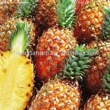 Herb Medicine Pineapple Extract Powder