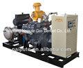 la biomasa 80kw generador de energía eléctrica precio