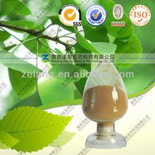 Ginkgo biloba Leaf Extract manufacturer