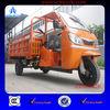 2013 New 3 Wheel Motor Trike