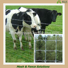 Galvanized Grassland Cattle Fence Hot Sale