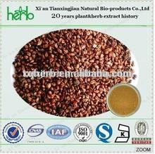 Cinnamomum de la corteza cinnamomi cassia semillas en polvo extracto de corteza