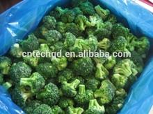frozen broccoli floret hot sale