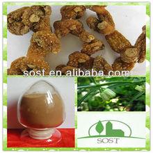 High Quality Manyflower Solomonseal Rhizome Plant Extract