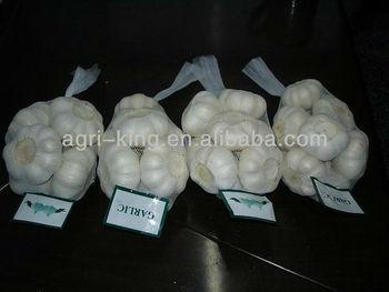 Natural fresh garlic