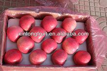 28# qinguan apple fresh apple