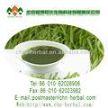 Organic agropyre poudre/poudre d'herbe de blé/poudre de jus d'herbe de blé biologique