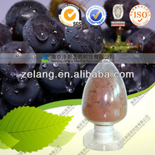 Natural Grape Seed Extract OPC 95%