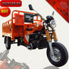 Fashion tricycle 3 wheel motorcycle 250cc (SS250ZH-B9)