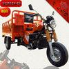 New 250cc trike 250cc reverse trike (SS250ZH-B9)