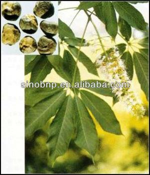 High Quality Boswellia Serrata Extract Boswellic Acid