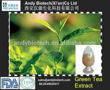 Green Tea Extract(Polyphenol 80%,Catechins 60%,EGCG 30%,Caffeine 5%)
