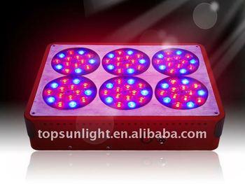 plasma light apollo 6 distributors canada