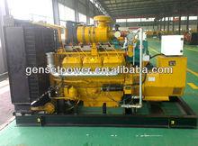 250kva Natural Gas Generator