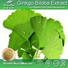 Pure Natural Ginkgo Biloba Extract 24%/6%