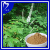 Factory Directly Supply black cohosh extract powder