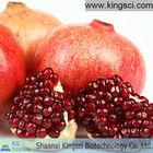 Pomegranate peel extract Ellagic acid 90% HPLC