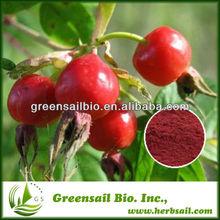 Pure Natural Rose hip Extract/ Ascorbic Acid Vitamin C
