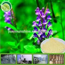 High Quality Radix Scutellaria Extract / Baicalin