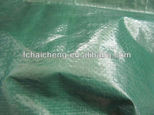 Grass Green PE Fabric Cover